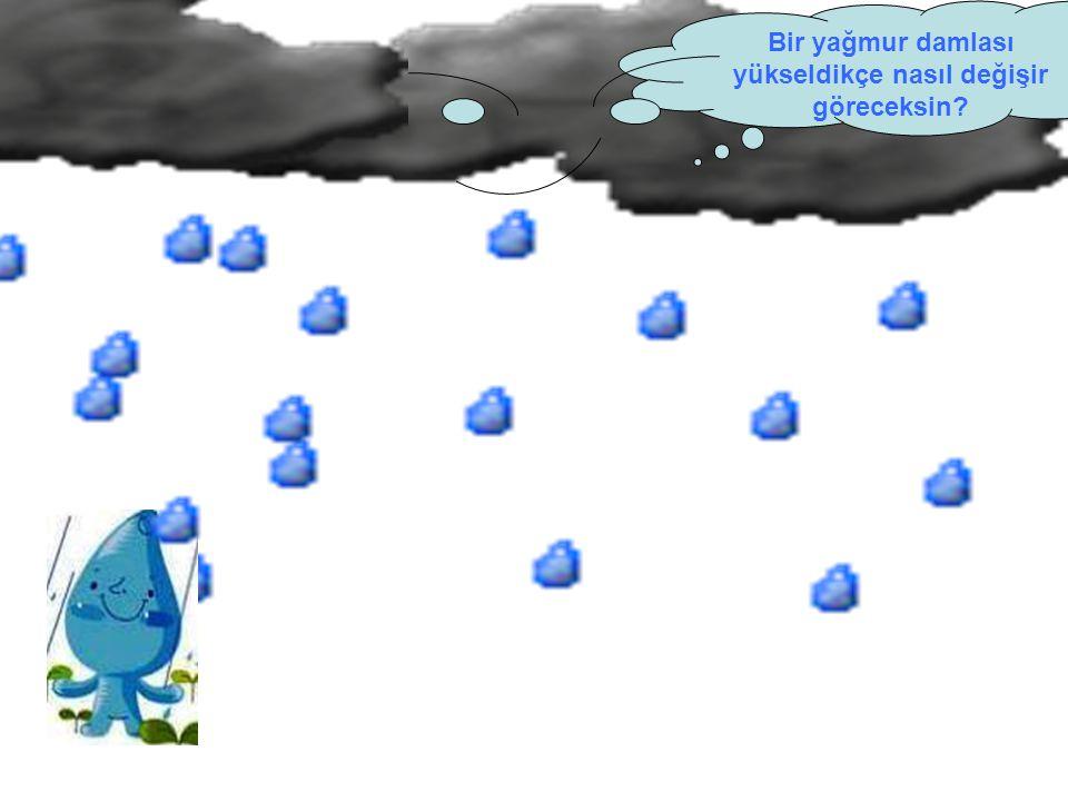 Bir yağmur damlası yükseldikçe nasıl değişir göreceksin