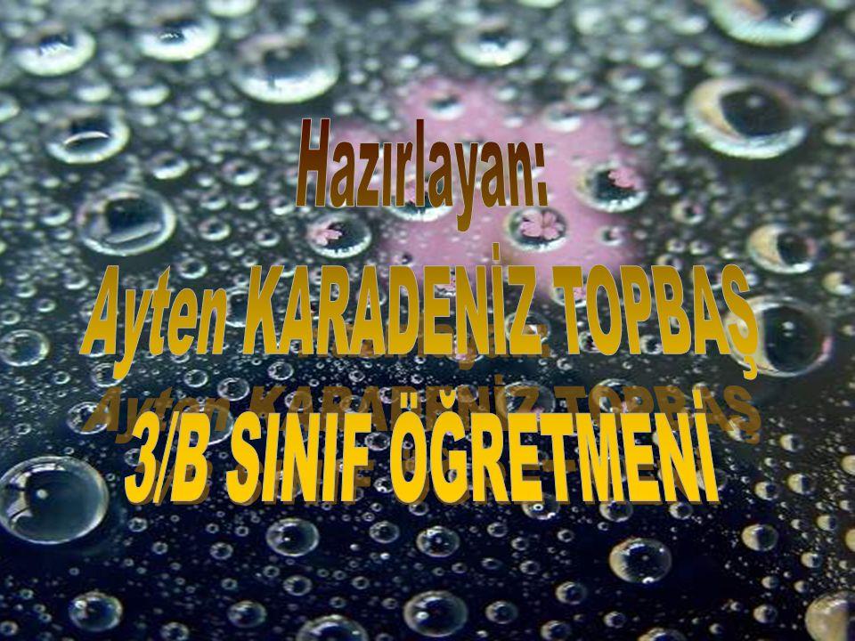 Ayten KARADENİZ TOPBAŞ