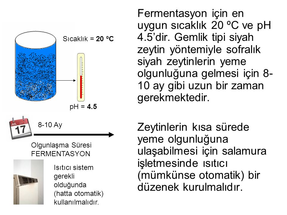 Fermentasyon için en uygun sıcaklık 20 ºC ve pH 4. 5'dir