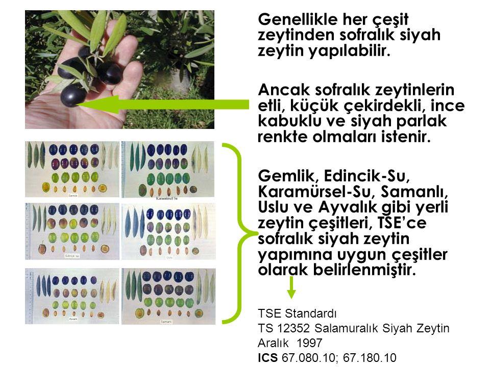 Genellikle her çeşit zeytinden sofralık siyah zeytin yapılabilir.