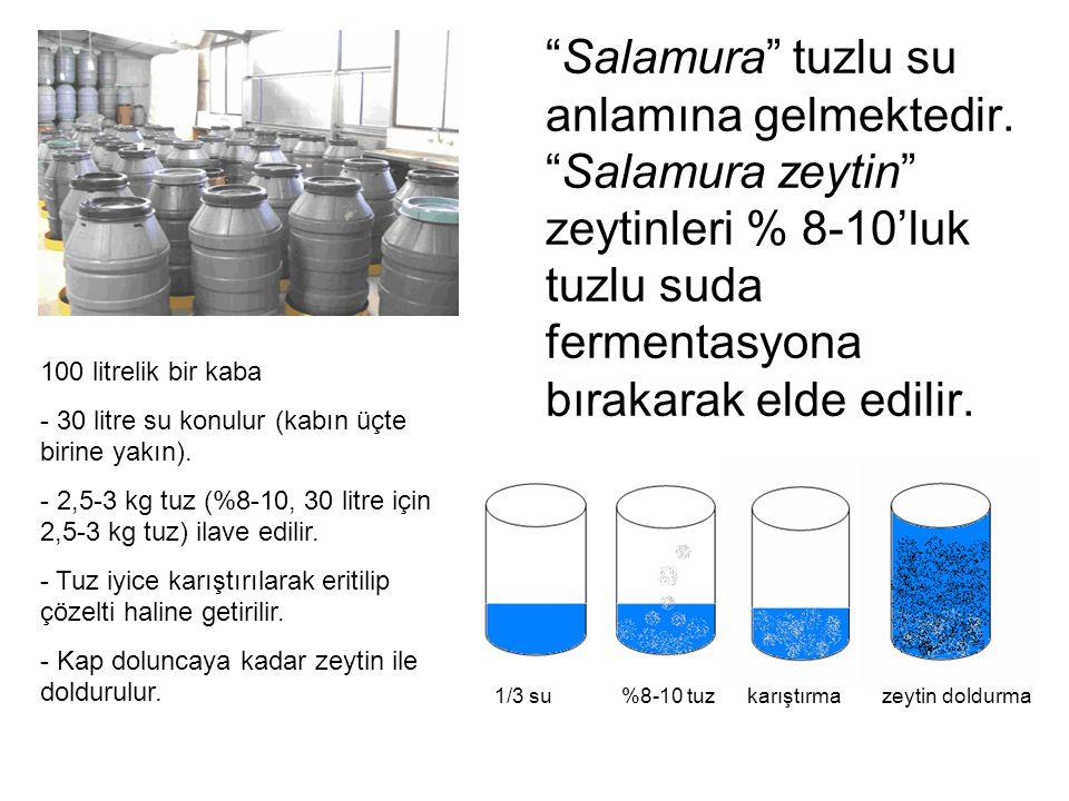 Salamura tuzlu su anlamına gelmektedir