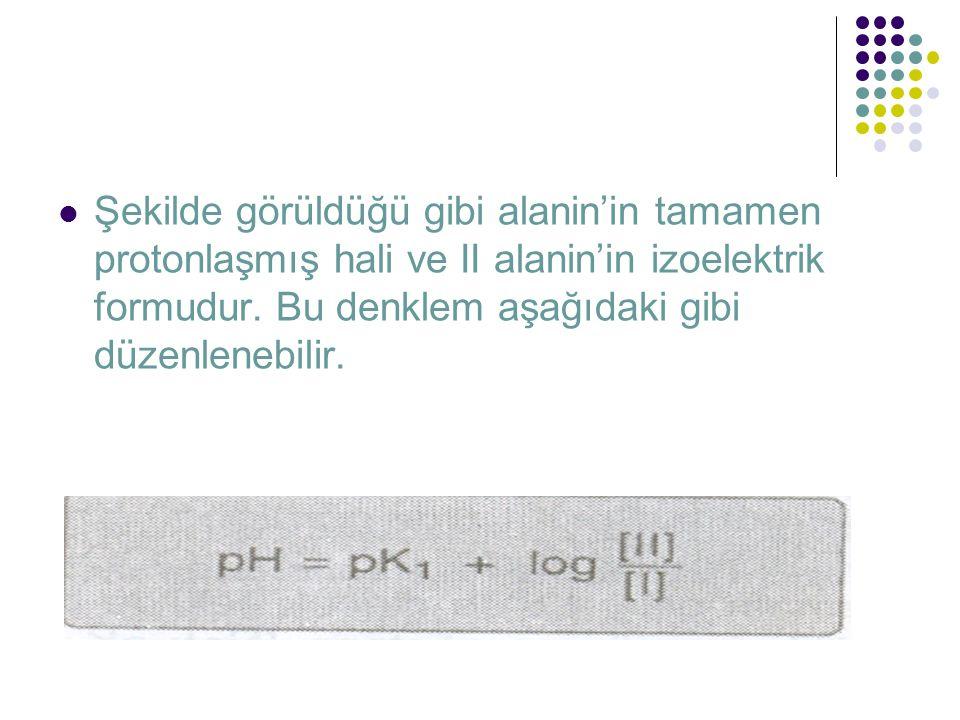 Şekilde görüldüğü gibi alanin'in tamamen protonlaşmış hali ve II alanin'in izoelektrik formudur.