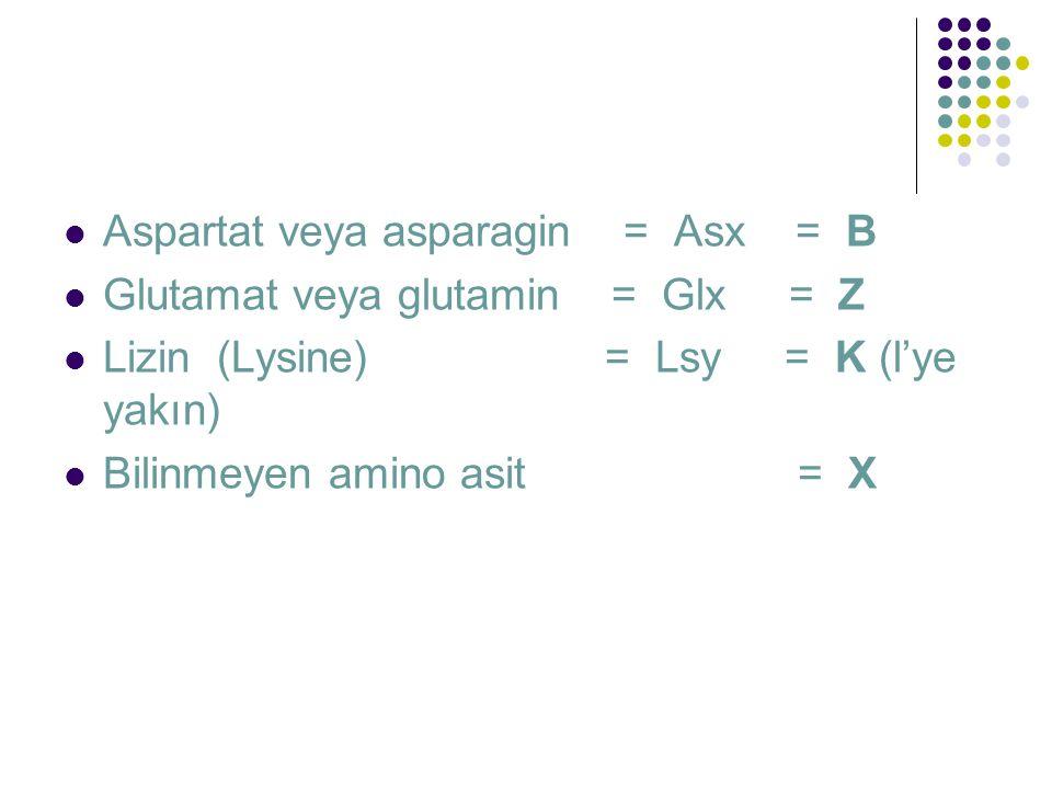 Aspartat veya asparagin = Asx = B