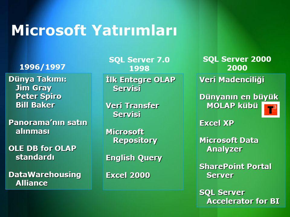 Microsoft Yatırımları