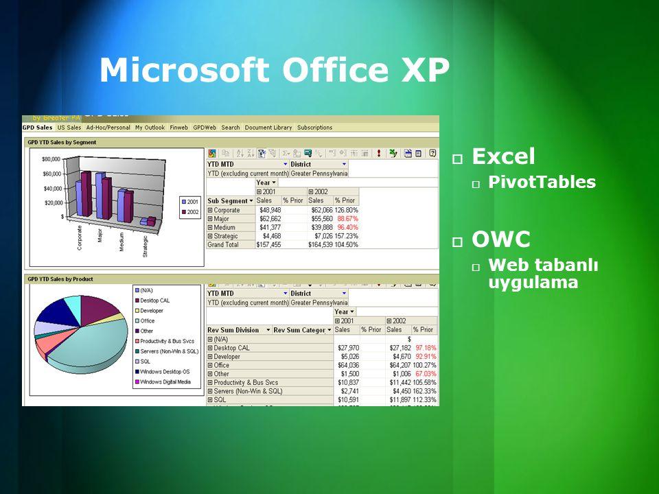 Microsoft Office XP Excel PivotTables OWC Web tabanlı uygulama