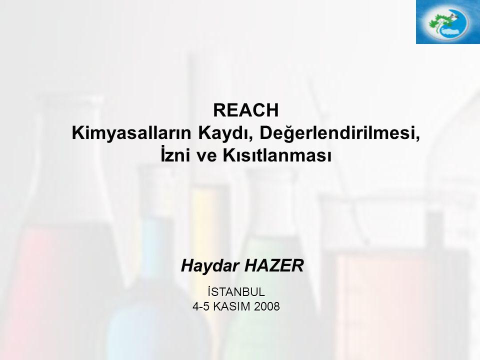 REACH Kimyasalların Kaydı, Değerlendirilmesi, İzni ve Kısıtlanması