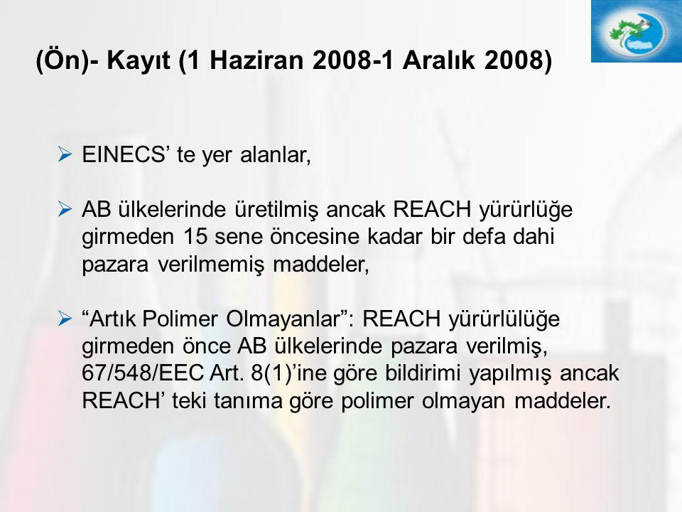(Ön)- Kayıt (1 Haziran 2008-1 Aralık 2008)