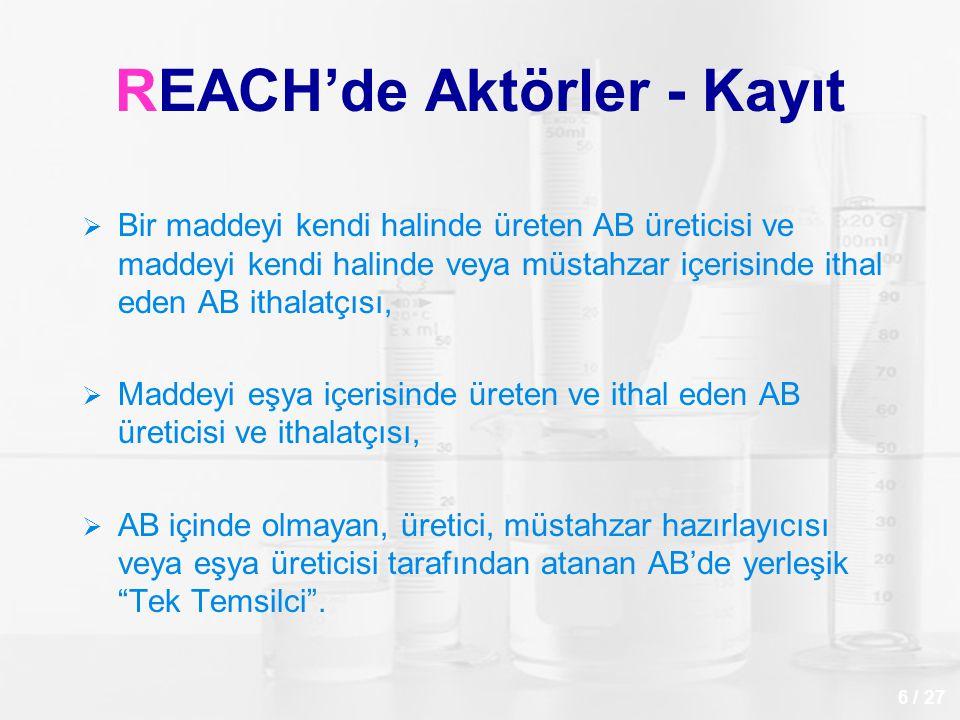 REACH'de Aktörler - Kayıt