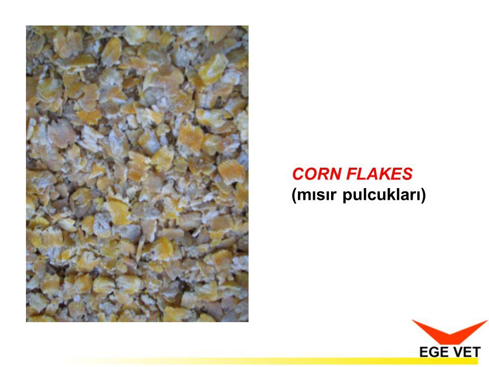 CORN FLAKES (mısır pulcukları)