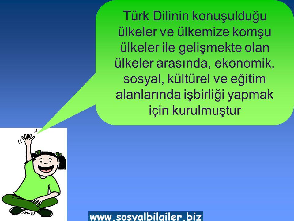 Türk Dilinin konuşulduğu ülkeler ve ülkemize komşu ülkeler ile gelişmekte olan ülkeler arasında, ekonomik, sosyal, kültürel ve eğitim alanlarında işbirliği yapmak için kurulmuştur