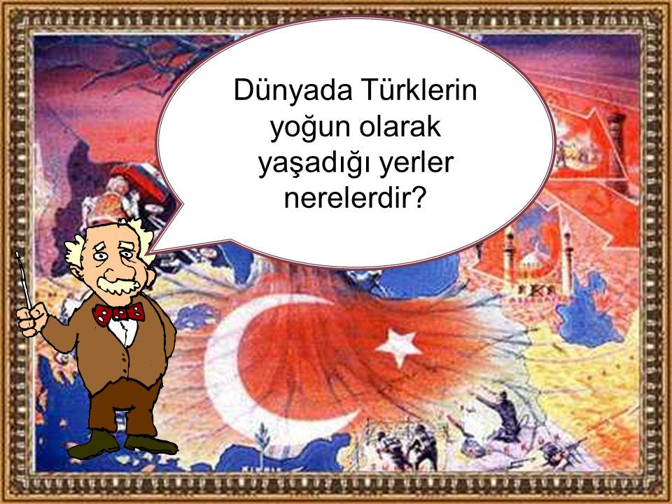 Dünyada Türklerin yoğun olarak yaşadığı yerler nerelerdir