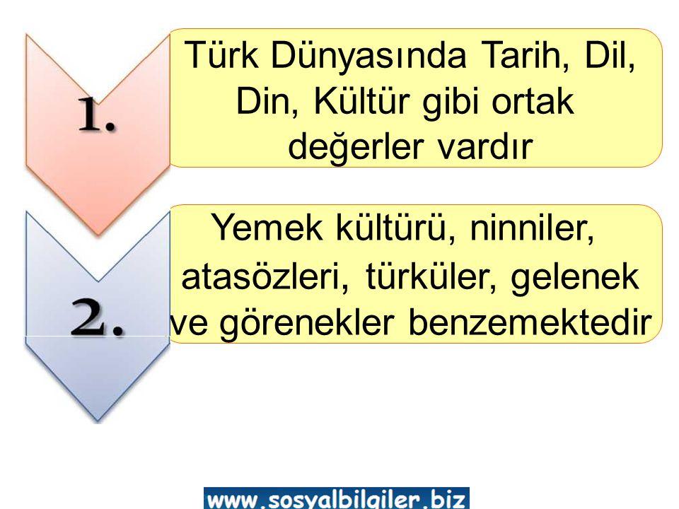 Türk Dünyasında Tarih, Dil,