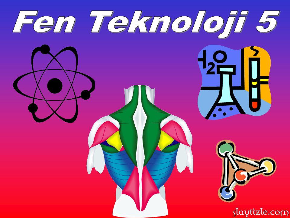 Fen Teknoloji 5
