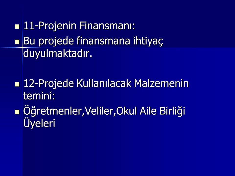 11-Projenin Finansmanı: