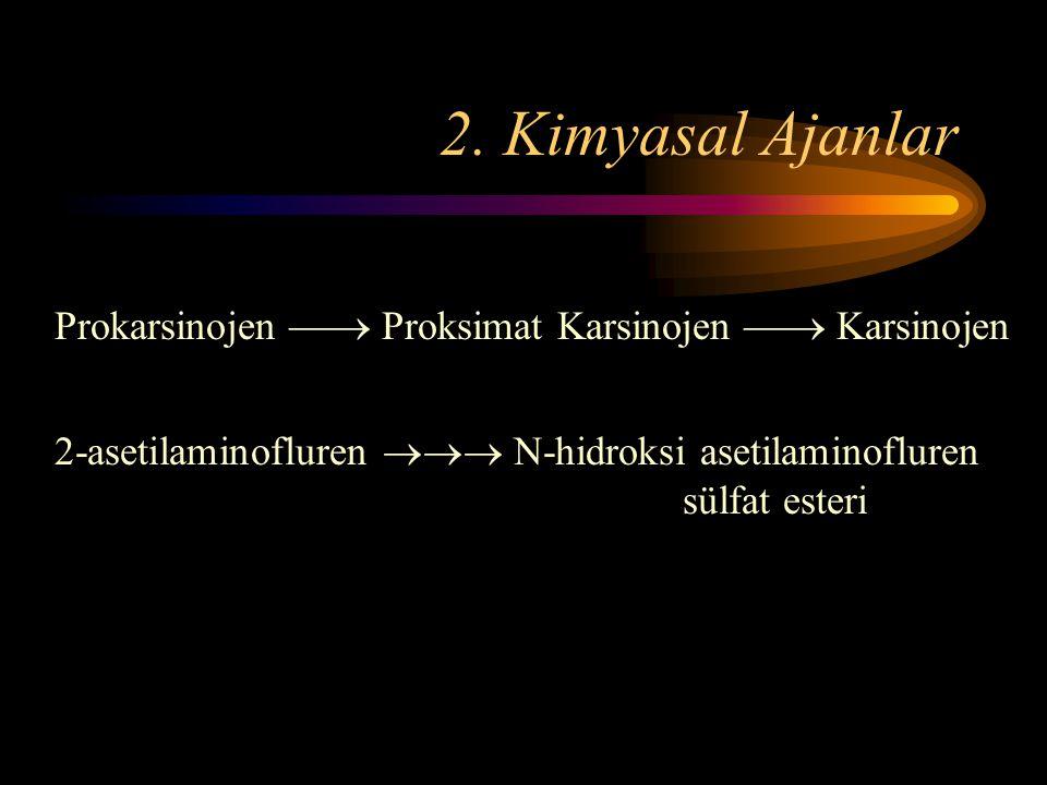 2. Kimyasal Ajanlar Prokarsinojen  Proksimat Karsinojen  Karsinojen.