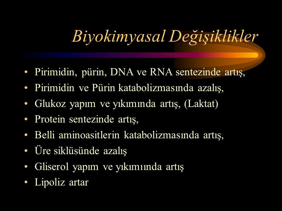 Biyokimyasal Değişiklikler
