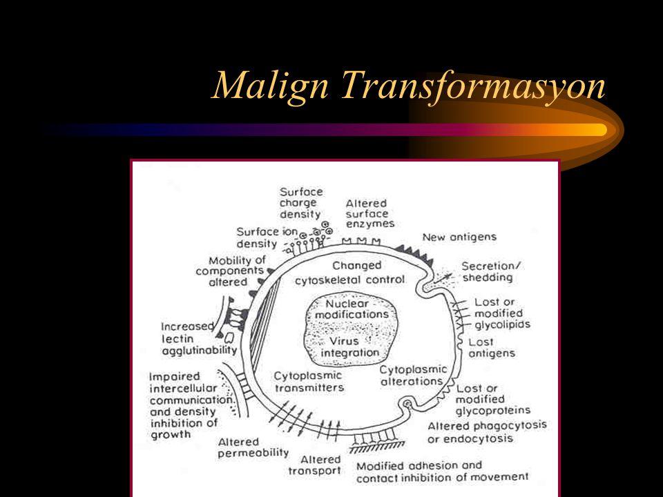 Malign Transformasyon