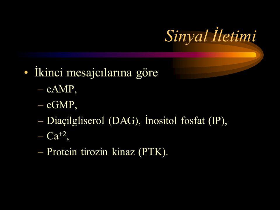 Sinyal İletimi İkinci mesajcılarına göre cAMP, cGMP,