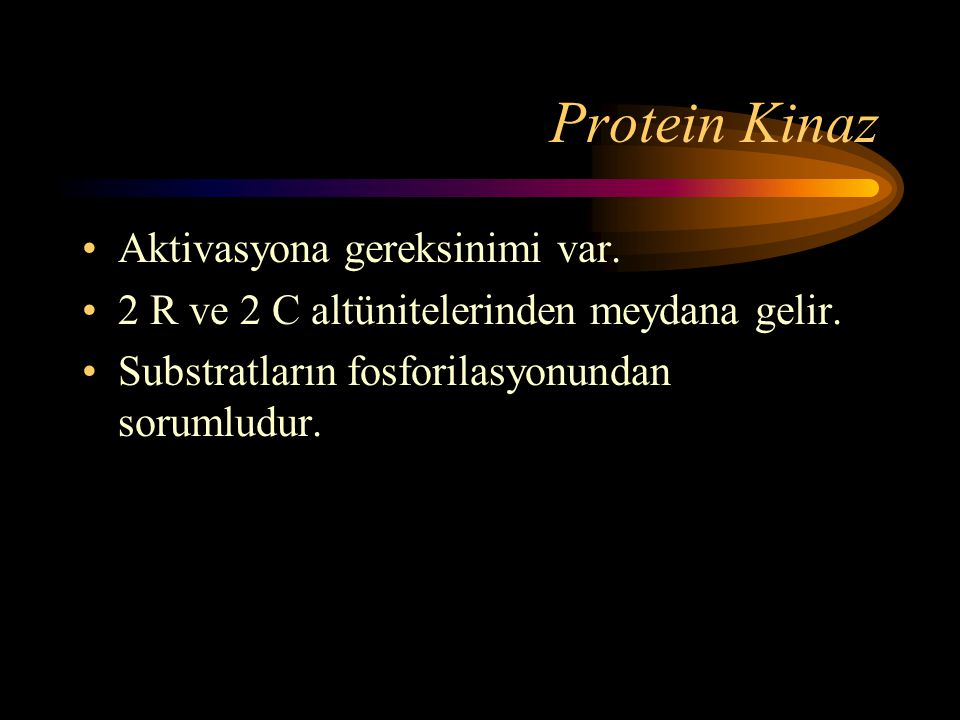 Protein Kinaz Aktivasyona gereksinimi var.