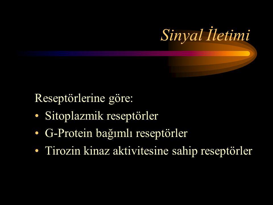 Sinyal İletimi Reseptörlerine göre: Sitoplazmik reseptörler