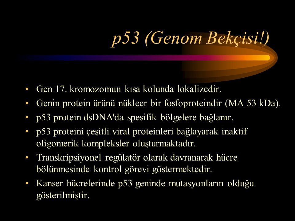 p53 (Genom Bekçisi!) Gen 17. kromozomun kısa kolunda lokalizedir.