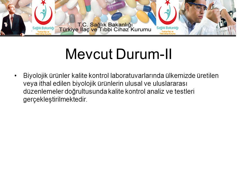Mevcut Durum-II