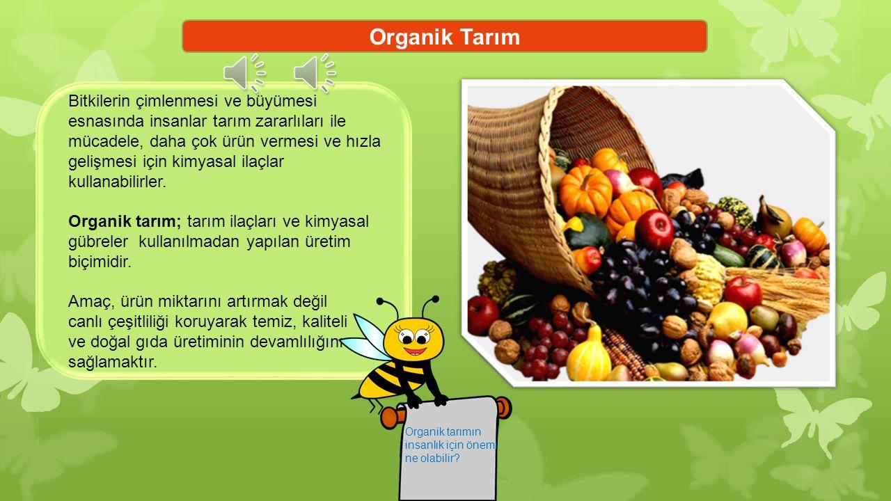 Organik Tarım Bitkilerin çimlenmesi ve büyümesi
