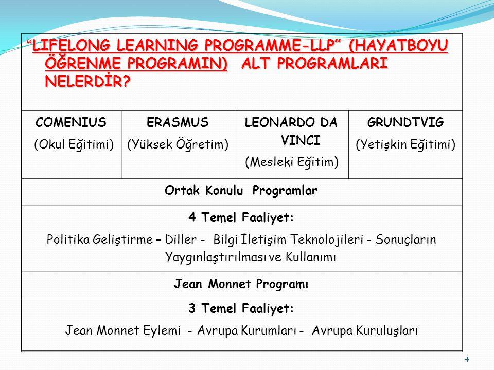 Ortak Konulu Programlar