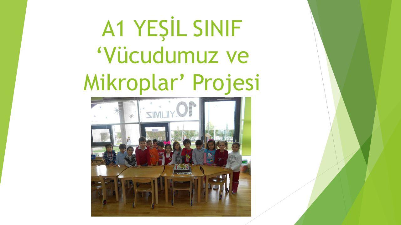 A1 YEŞİL SINIF 'Vücudumuz ve Mikroplar' Projesi