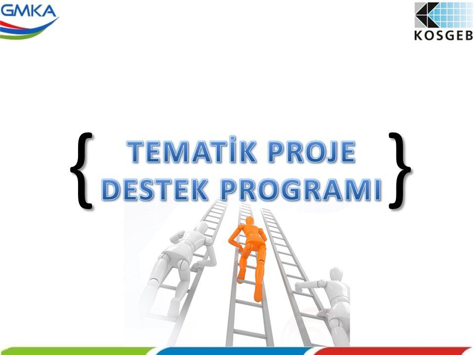 { } TEMATİK PROJE DESTEK PROGRAMI