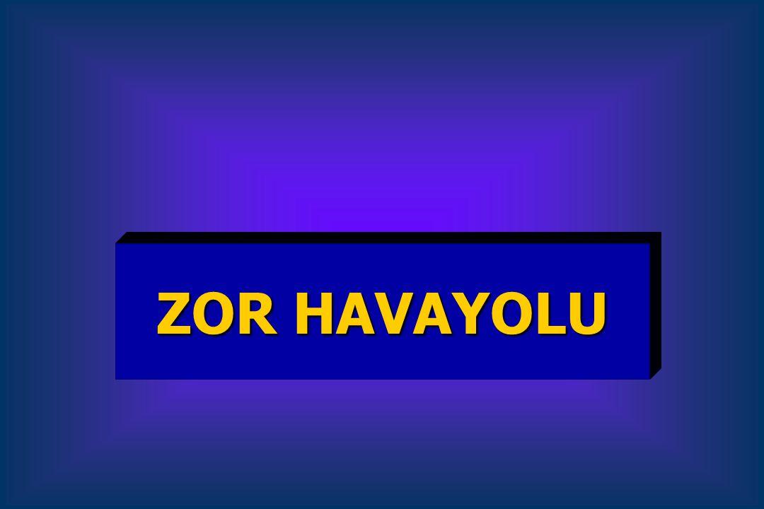 ZOR HAVAYOLU