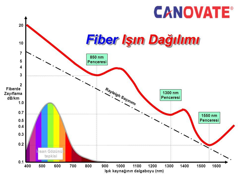 Işık kaynağının dalgaboyu (nm)