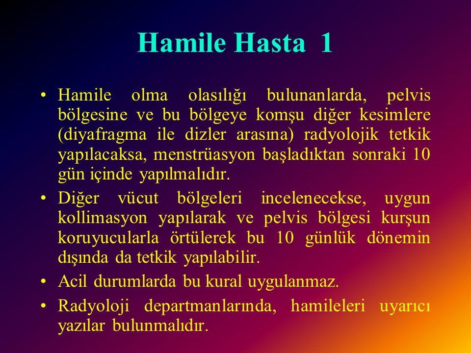 Hamile Hasta 1