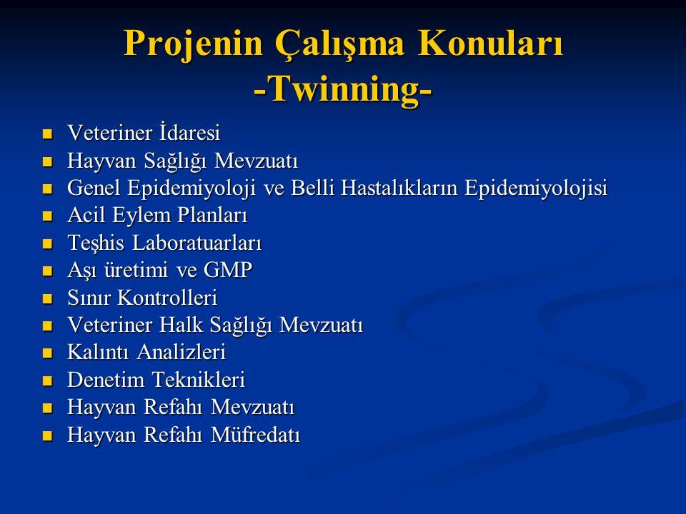 Projenin Çalışma Konuları -Twinning-