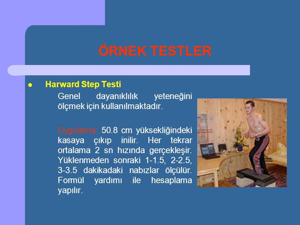 ÖRNEK TESTLER Harward Step Testi