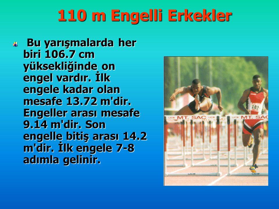 110 m Engelli Erkekler