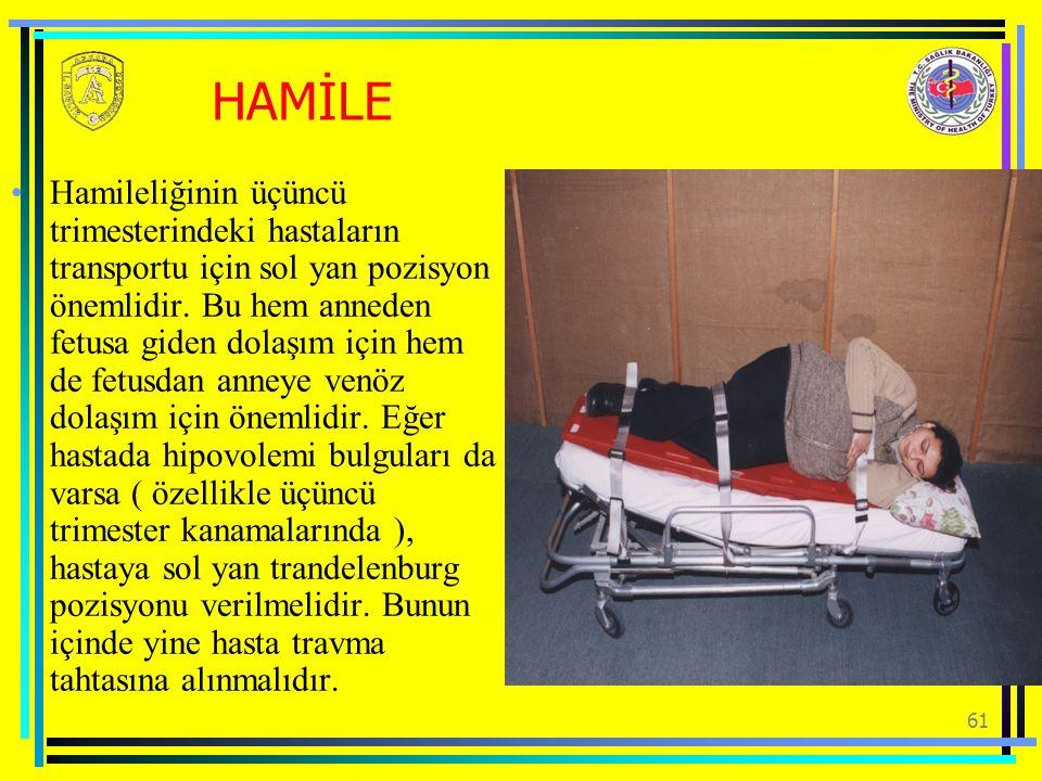 HAMİLE
