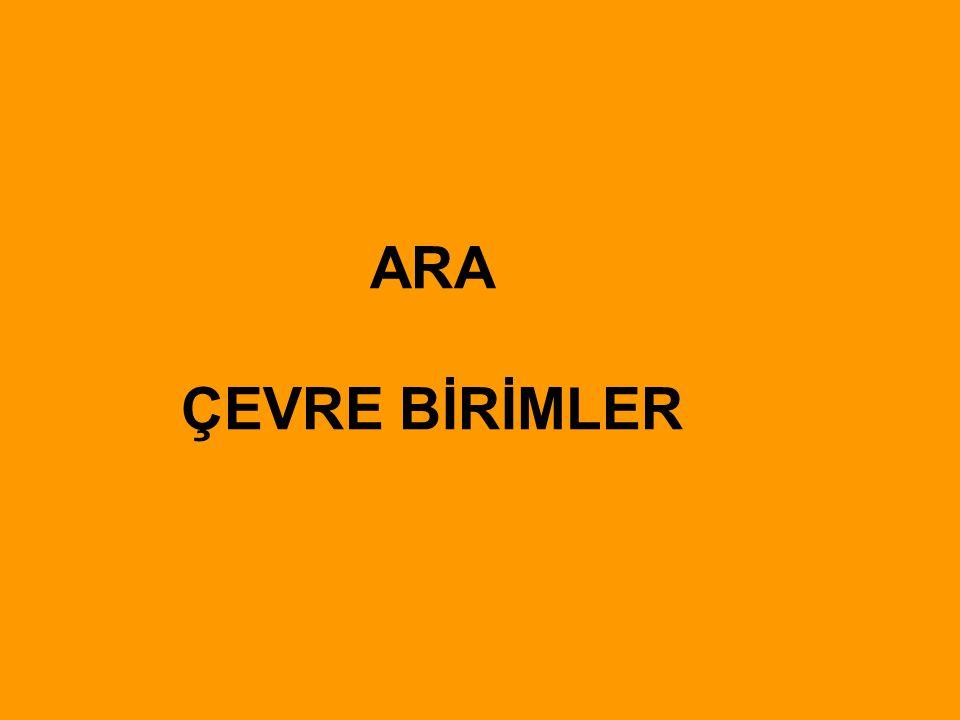 ARA ÇEVRE BİRİMLER