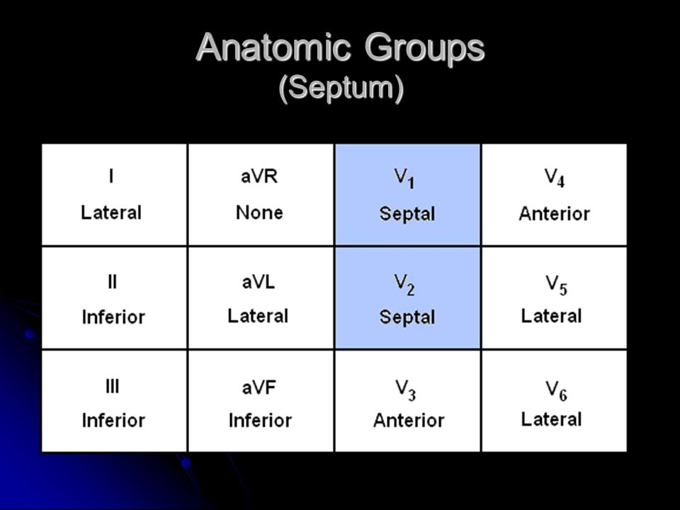 Anatomic Groups (Septum)