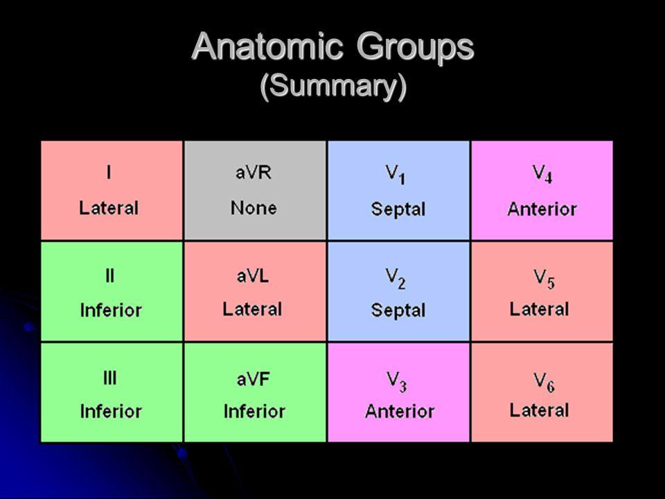 Anatomic Groups (Summary)