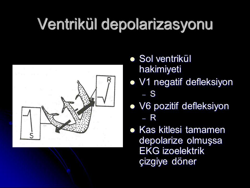 Ventrikül depolarizasyonu