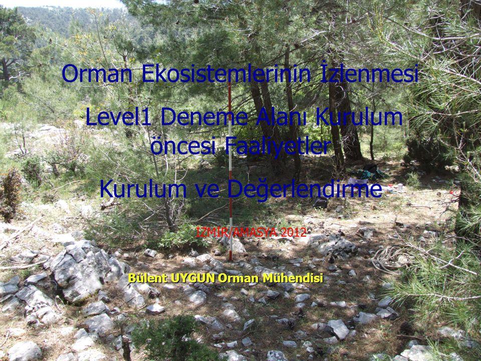 Orman Ekosistemlerinin İzlenmesi