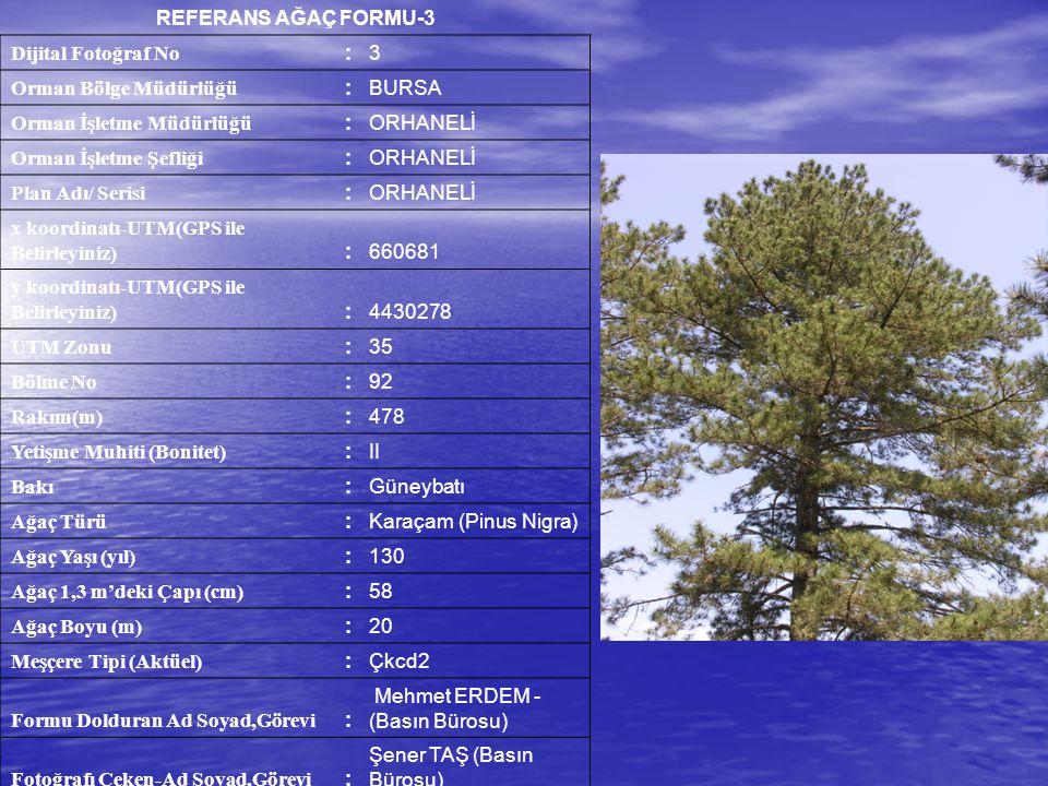 REFERANS AĞAÇ FORMU-3 Dijital Fotoğraf No. : 3. Orman Bölge Müdürlüğü. BURSA. Orman İşletme Müdürlüğü.