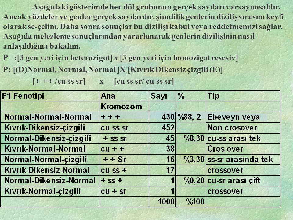 Aşağıdaki gösterimde her döl grubunun gerçek sayıları varsayımsaldır