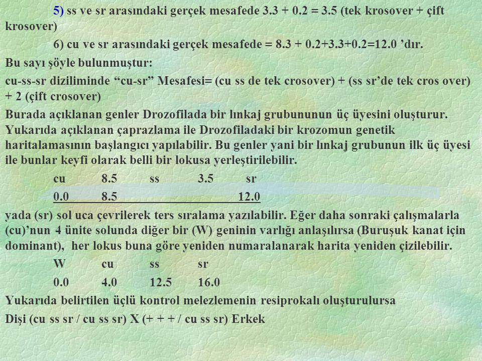 5) ss ve sr arasındaki gerçek mesafede 3. 3 + 0. 2 = 3