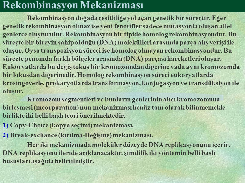 Rekombinasyon Mekanizması