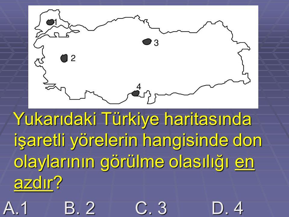 Yukarıdaki Türkiye haritasında işaretli yörelerin hangisinde don olaylarının görülme olasılığı en azdır