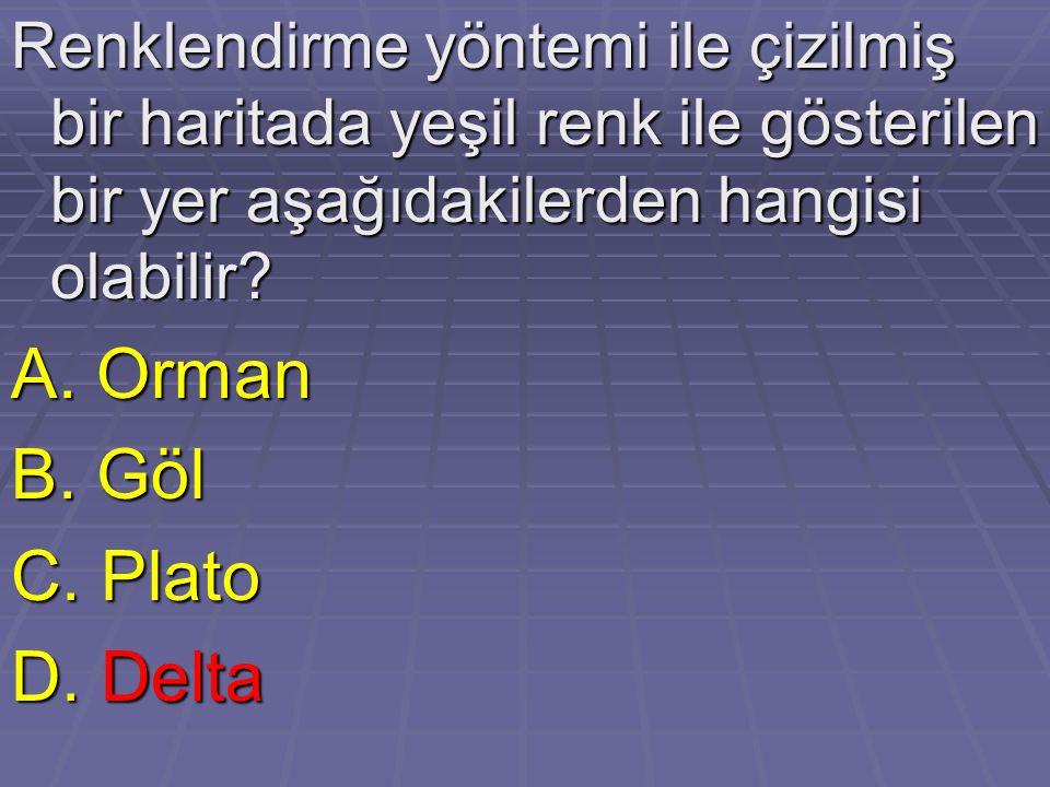 A. Orman B. Göl C. Plato D. Delta