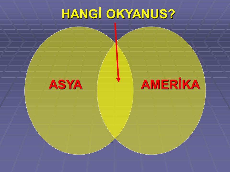HANGİ OKYANUS ASYA AMERİKA