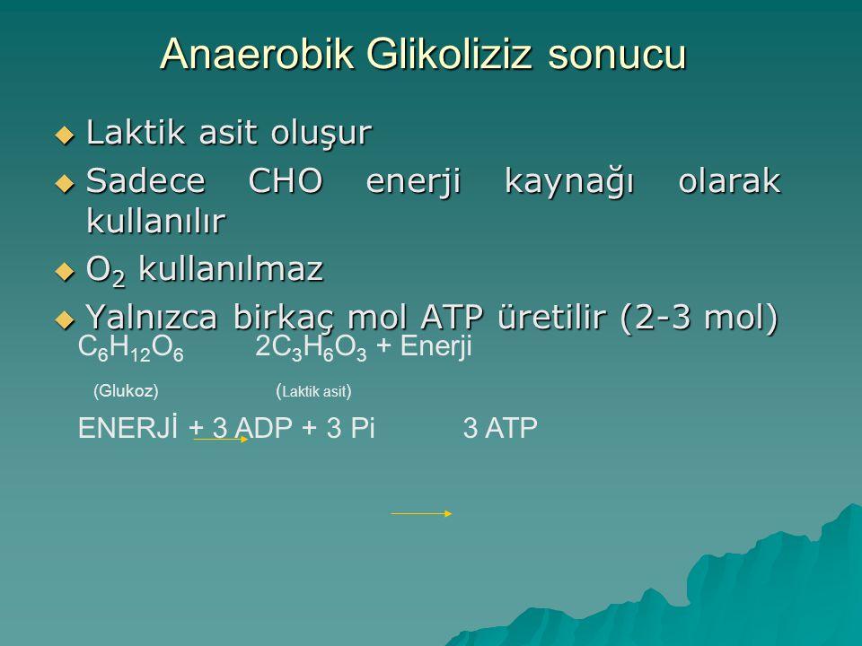 Anaerobik Glikoliziz sonucu